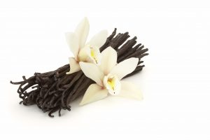 vanilla beans with two flowrs on white